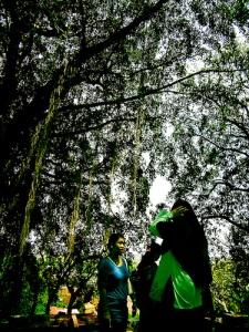 Unwinged - Ziarah (flickr.com)